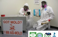 mold remediation Fort Worth